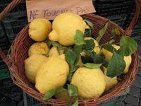 Rome - lemons