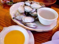 Gastro Chic Chatham Squire Steamers