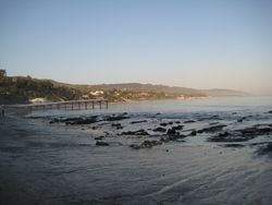 Paradise Cove 2