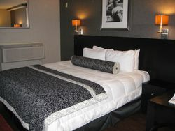 Ramada West Hollywood - Room