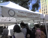 Cato_corners_union_sq_1_91507